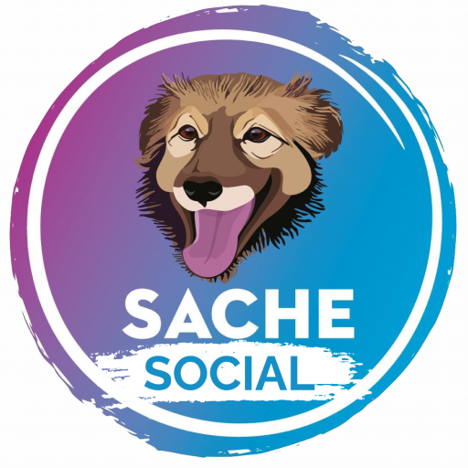 http://sache.info/social/wp-content/uploads/2021/04/cropped-sacehsociallogo.png