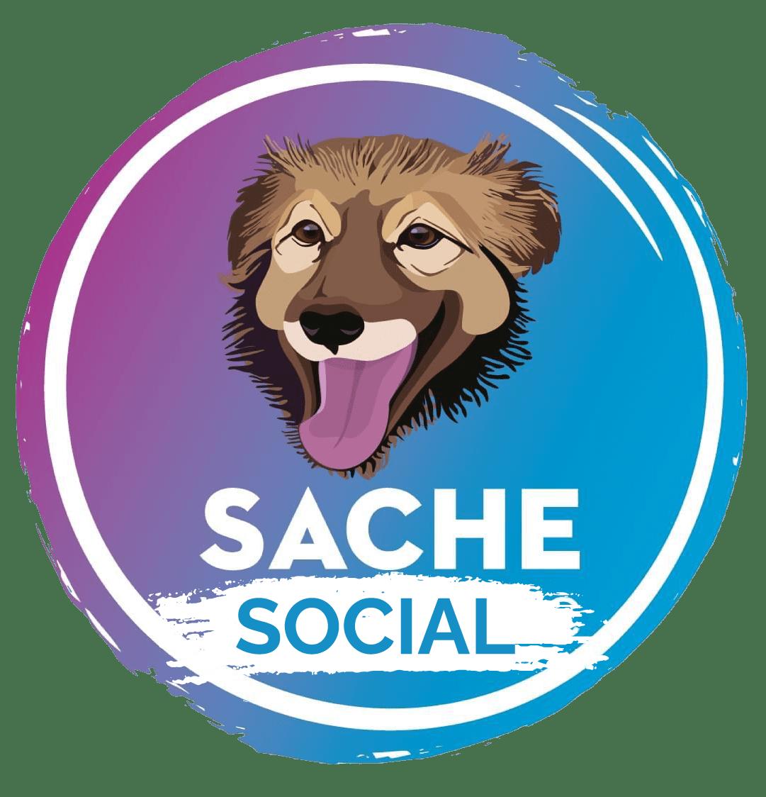 sacehsociallogo
